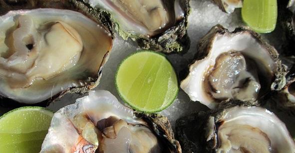Best of bucerias for Louisiana fish bar