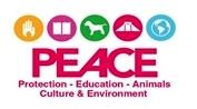 PEACE_Mexico